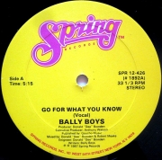 LP - BALLY  BOYS ‎ –  GO FOR WHAT YOU KNOW